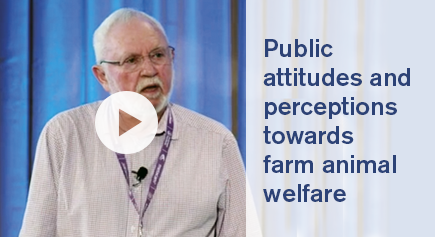 image Video Public attitudes and perceptions towards farm animal welfare